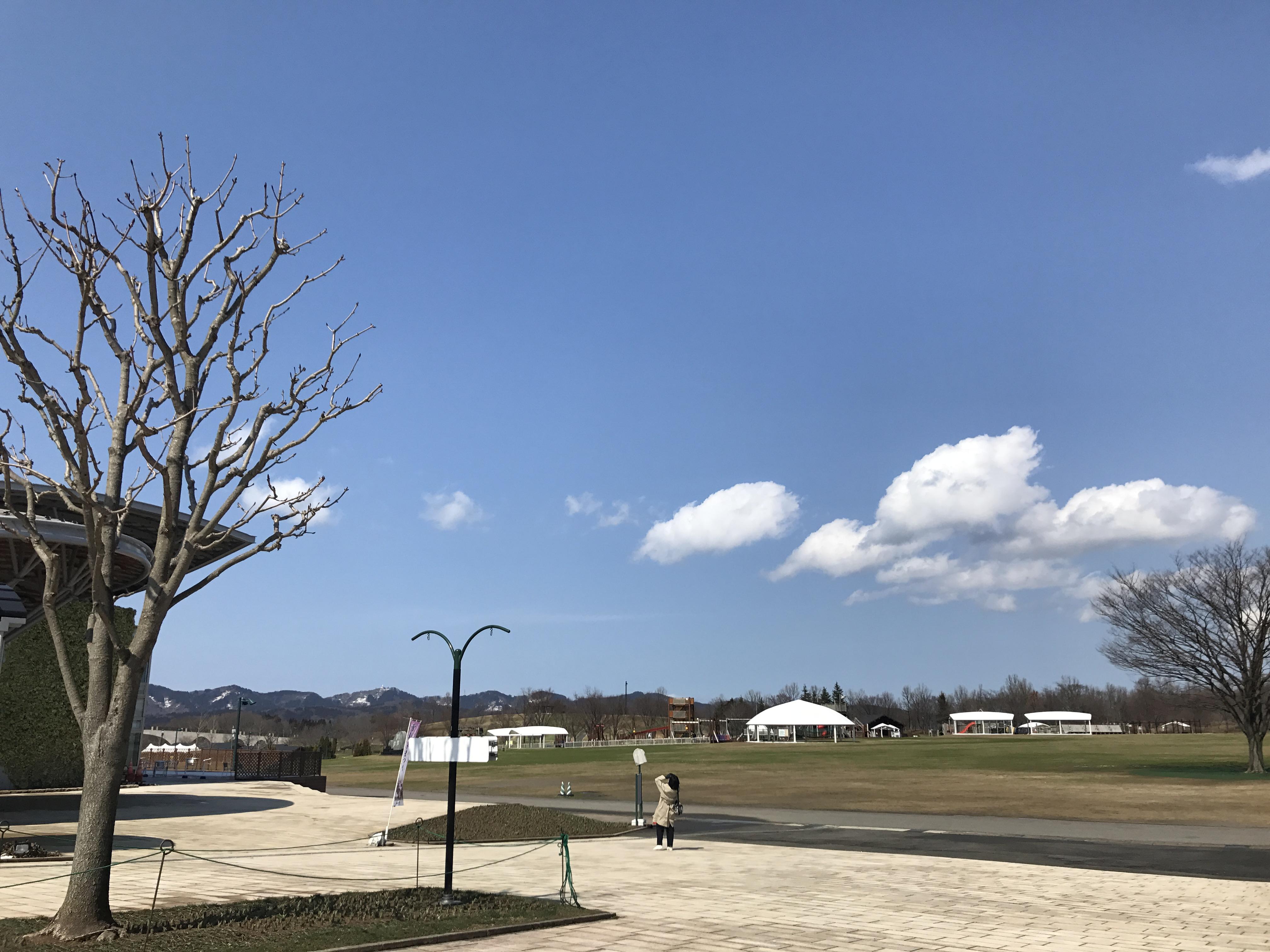 トキっ子くらぶ×越後丘陵公園「子育て応援プロジェクト」赤ちゃんと一緒に!産後ママのバランスボール